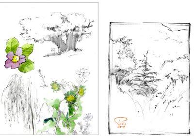 carnet aquarelle dessin